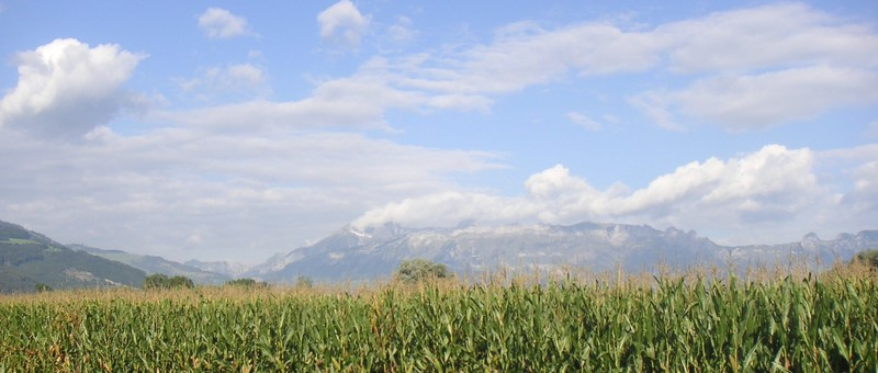 Field%2c corn%2c liechtenstein%2c mountains%2c alps%2c vaduz%2c sky%2c clouds%2c landscape