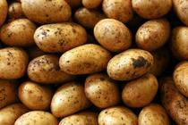 Potatoes can be healthful